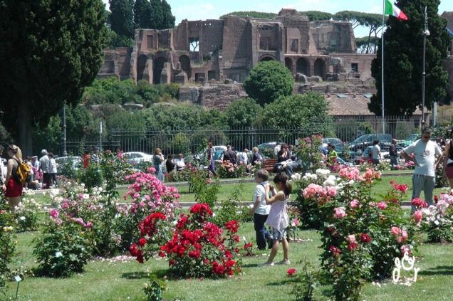 roseto-comunale-di-Roma-2