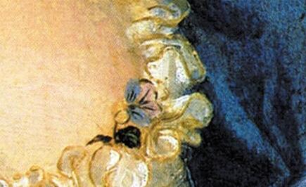 tiziano-viola-violante-2