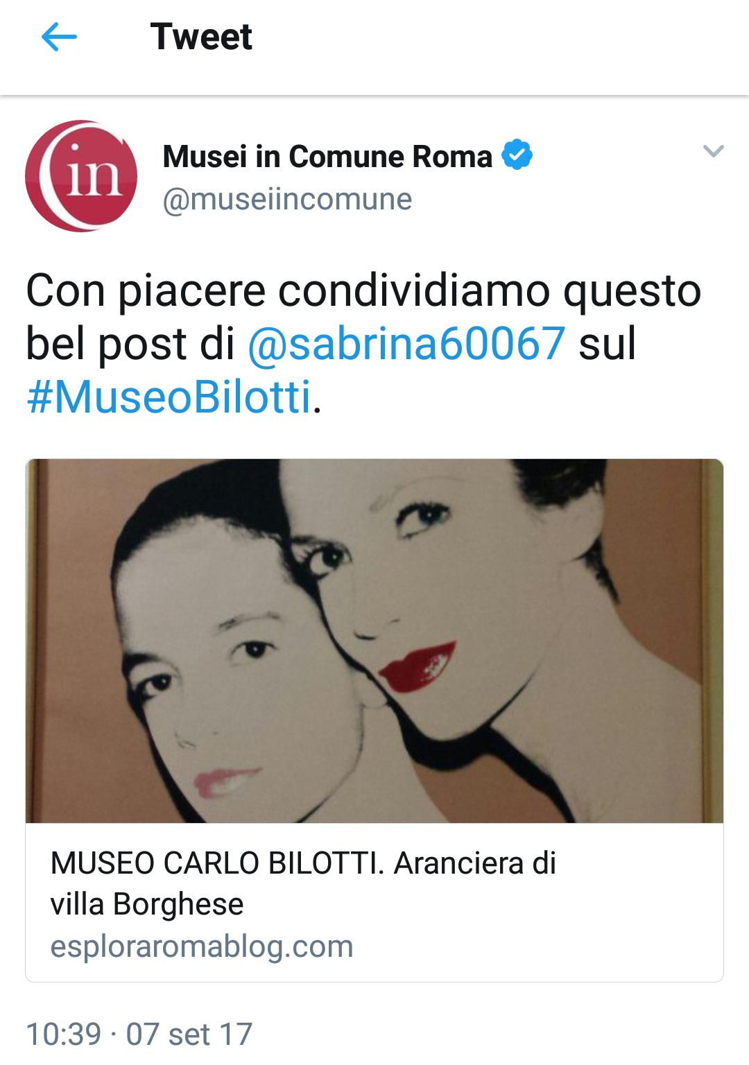 Recensione Museo Carlo Bilotti